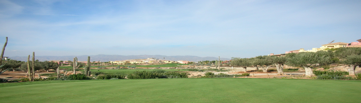 Desert Springs Golf Resort Spain Golf Breaks
